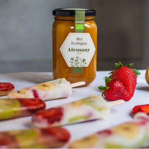 Helados de fruta con miel de flores ecológica Alemany
