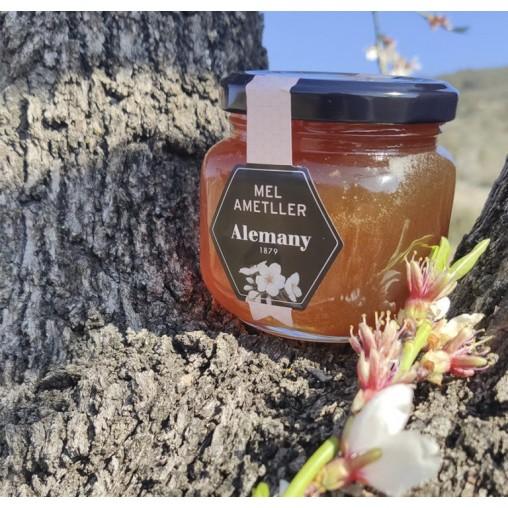 Miel de flor de Almendro 250g | Alemany Online