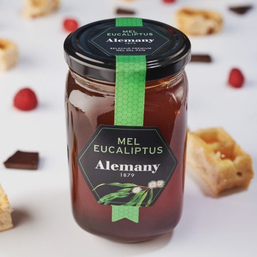 Miel de Eucalipto Alemany 500g   Comprar miel online