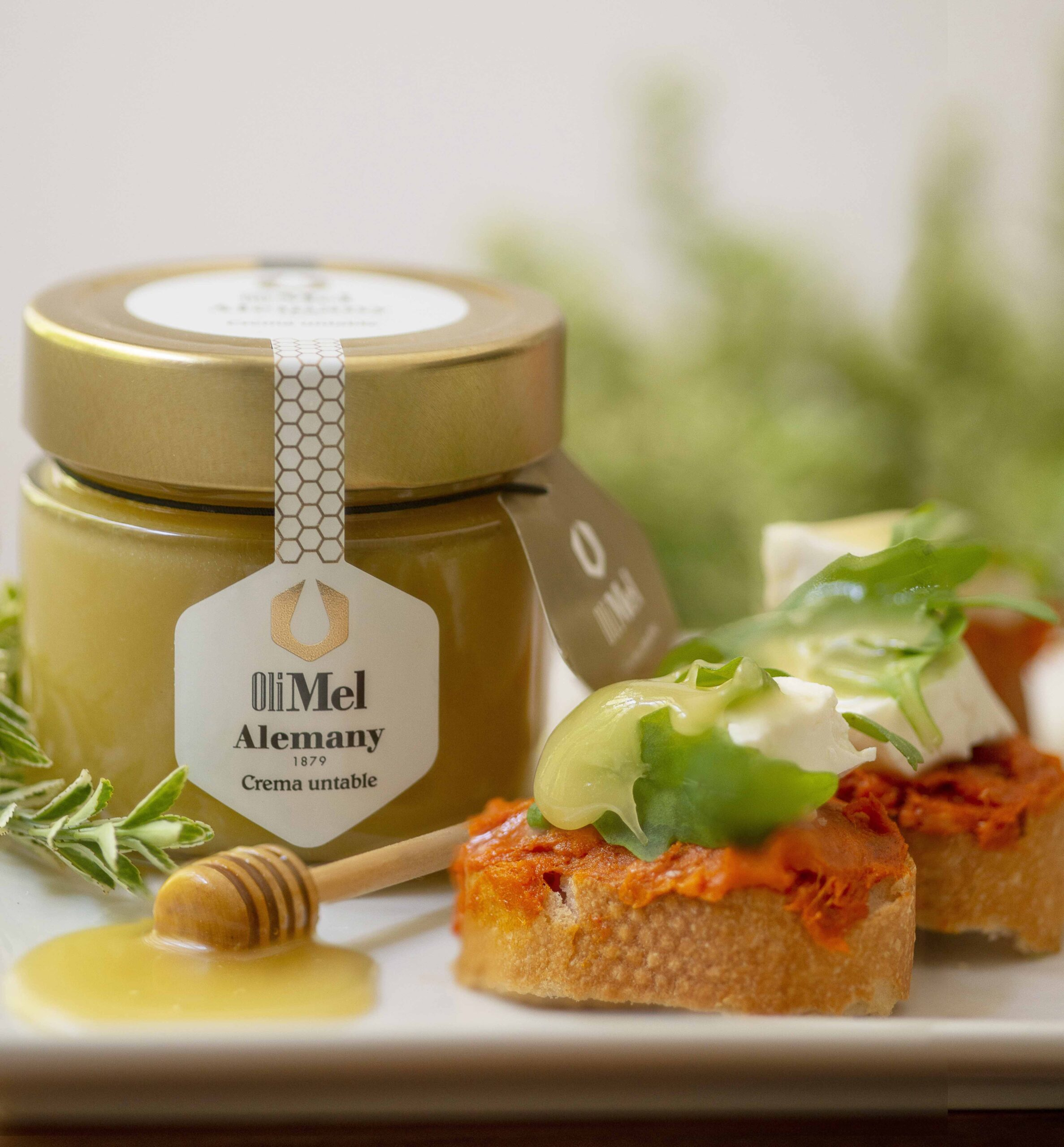 Tostadas con sobrasada, queso y Oleomel Alemany