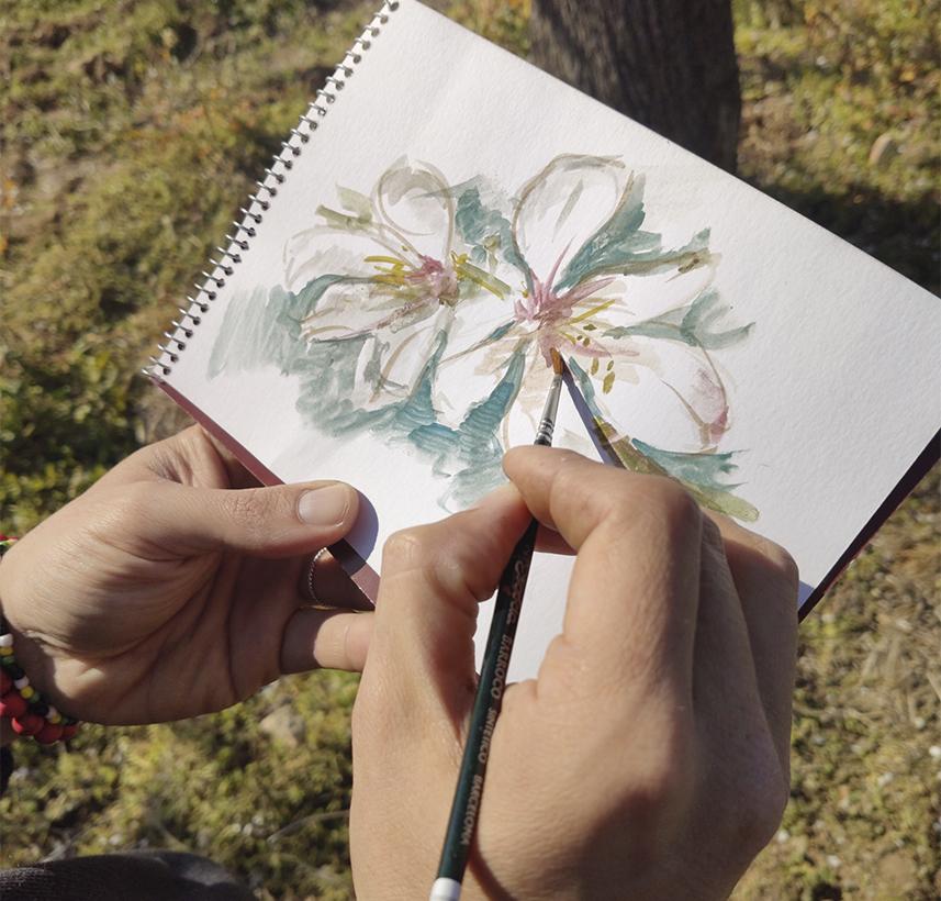 Esboç de flor d'ametller de Miquel Àngel herrero.